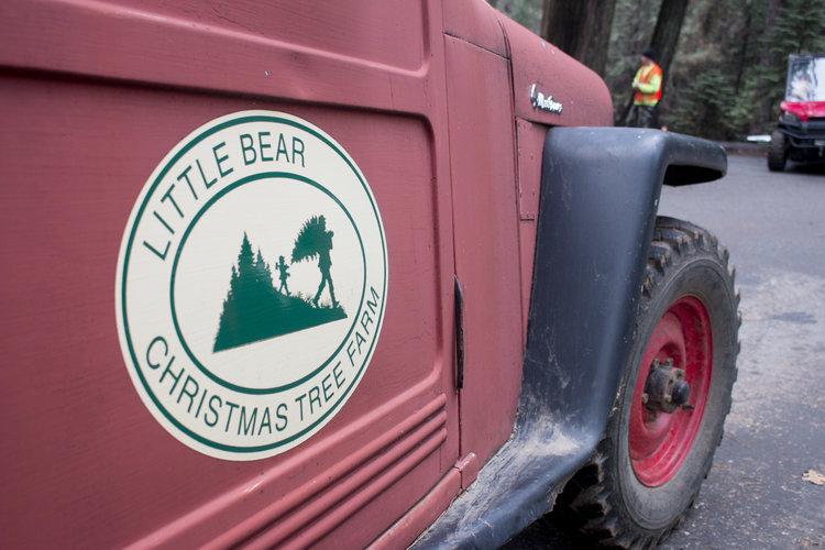 Little+Bear+Truck+Sign